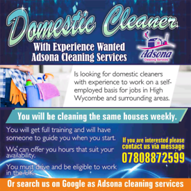 Home cleaners wanted