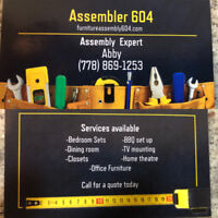 TV mounting and furniture assembly