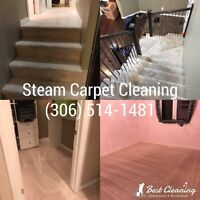 Steam Carpet Cleaning and Home Cleaning