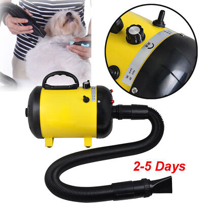 Dog Pet Grooming Dryer Hair Dryer Removable Pet Hairdryer +3 Nozzle 2400W 110V
