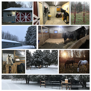 LF: P/T Weekend Barn Help in Exchange for Riding