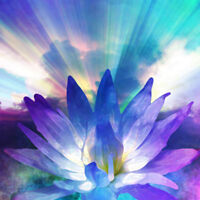 REIKI TREATMENTS - WONDERFUL FOR STRESS AND PAIN