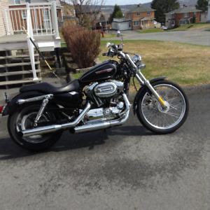 Harley sporster custom  XL1200
