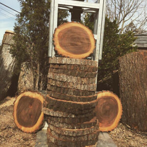 Tree Slices / Rustic centrepieces / Charcuterie boards