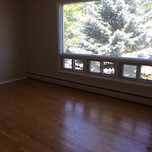 Top Floor Triplex!!! Great residential area near Park and River!