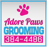 Adore Paws Grooming Dieppe! Open 7 Days a Week!! Cat's and Dogs!
