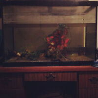 FISH TANK.. 65 GALLON Tank... good condition