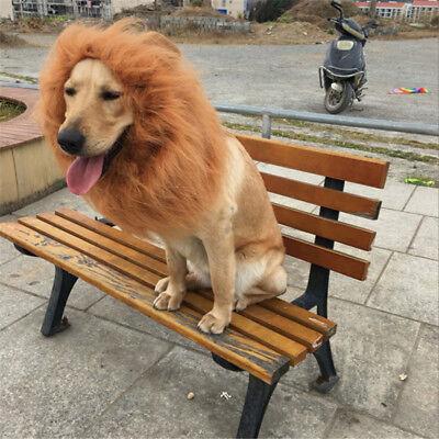 Pet Kostüm Lion Mähne Perücke Für Hund Katze Halloween Kleidung Festival - Fancy Hunde Kostüm