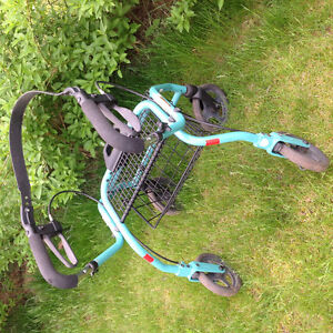 Dolomite Walker, Roller and Seat with Back Support Cambridge Kitchener Area image 2