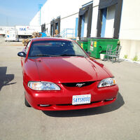 1995 Ford Mustang BASE Coupe (2 door) -- $3000/- O.B.O