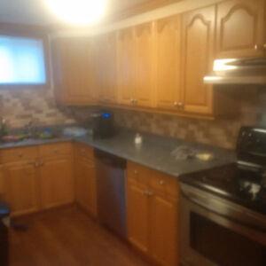 Keswick - 2 bedroom Basement apartment