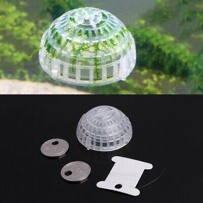 Aquarium Float Moss Ball Filter Decor Fish Tank Shrimp Green Live Plant Holders