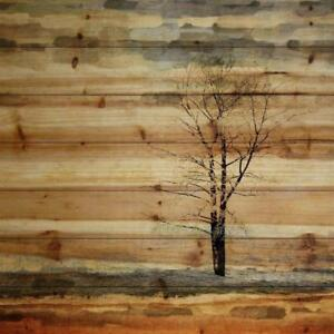 New, 'Landscape & Nature Tree Stands Alone' by Parvez Taj on Wood in Brown *PickupOnly