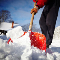 Snow Removal & Fall Clean  Up - West & Central Toronto