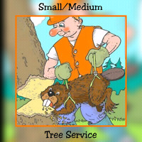 TREE SERVICE, TREE REMOVAL, TREE CUTTING,TREE PRUNING.