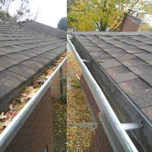Fall yard clean up & eavestrough cleaning London Ontario image 2