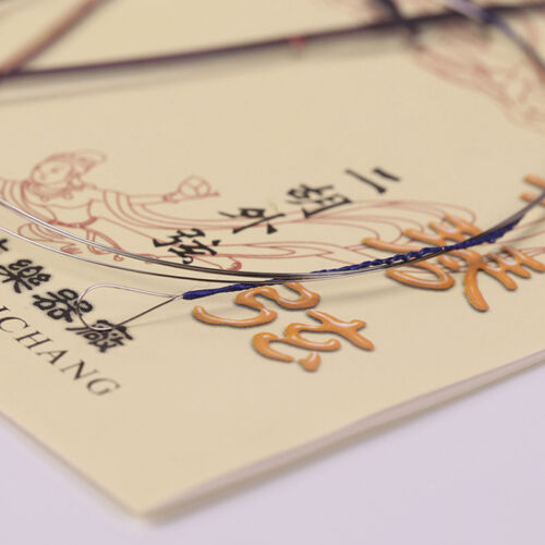 2 x Erhu Saiten Seil China Erhu   Chinese Violin Fiddle Musikinstrument