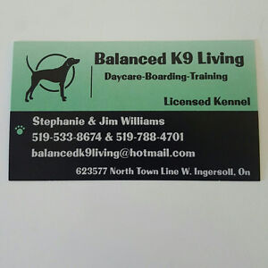 Balanced K9 Living - The Optimal Boarding Stay for all Dogs Stratford Kitchener Area image 1