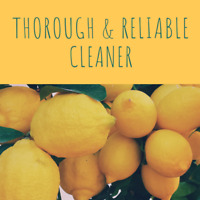 Thorough and trustworthy cleaner available
