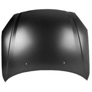 New Painted 2002-2004 Nissan Altima Hood & FREE shipping