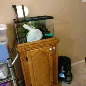 10 gal fish tank, stand and all accessories!