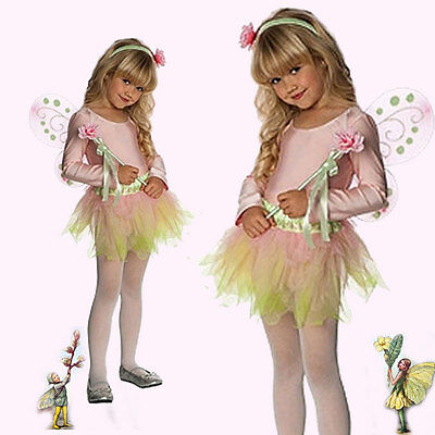 Pink Spring Fairy Costume Wings Headband Wand Tutu Leotard Tights S: Toddler  (Spring Fairy Wings)
