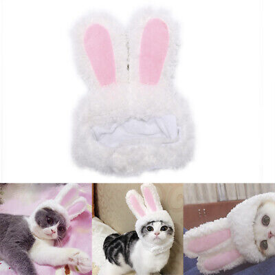 Costumes For Rabbits (Cat bunny rabbit ears hat pet cat cosplay costumes for cat small dogs party )