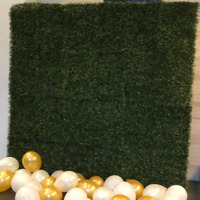 Grass wall for rent