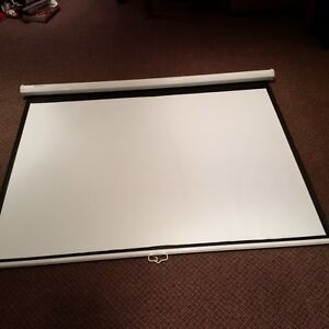 Projector screen - almost brand new