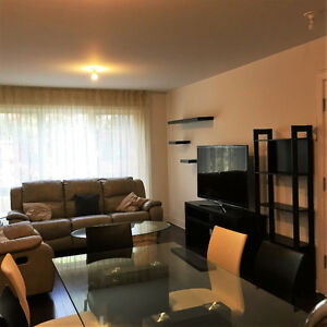 beautiful 2 bedroom condo,  20 min from downtown, metro Viau