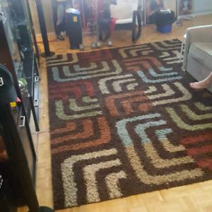 11'x8' area rug. shag. like new