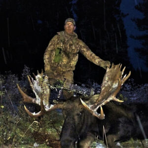 Alberta Big Game Hunting-Elk Deer Moose Bear Wolf