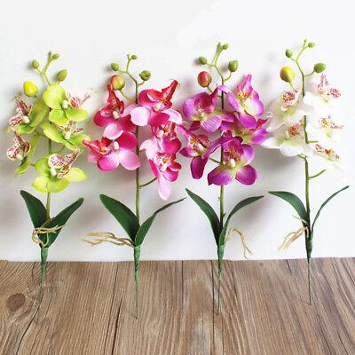 5 Head Artificial Butterfly Orchids Fake Slik Flowers Wedding Phalaenopsis Decor (Fake Butterflies)