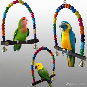 Will Give Loving Home To Any Unwanted Birds