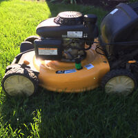 MOWING LAWN CARE SERVICE