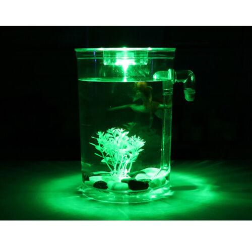 Creative Ecology Mini LED Fish Tank Luminous Glass Tank Aquarium Fish Tank 4