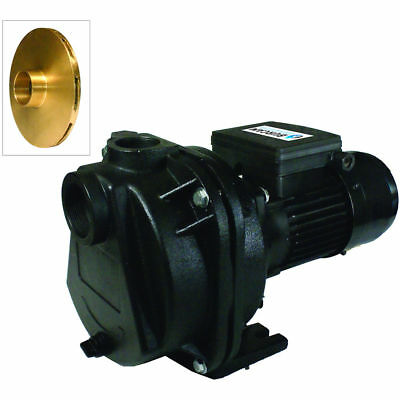 Burcam Pumps 81 Gpm 2 Hp Cast Iron Lawn Sprinklerirrigation Pump W Brass Im...