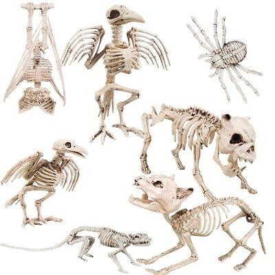 TIER SKELETT Halloween Deko Tierfigur Hund Katze Fledermaus Spinne Rabe Ratte ()