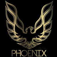 Live BAND 306 341 0978..PHOENIX, WEDDING'S NEW YEARS & CHRISTMAS