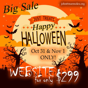 Website Development - Halloween Sale!