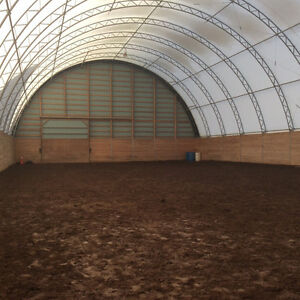 Horse Boarding   INDOOR ARENA  Events and More London Ontario image 2