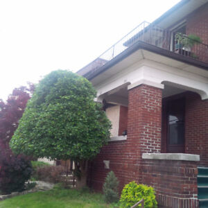 Huge & nice 900 sf 2-BR steps to waterfront $800++
