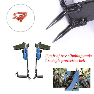 Stainless Steel Tree Climbing Spike Spurssafety Belt Straps Rope 100kg Loading