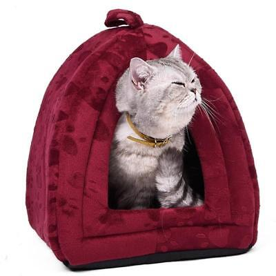 Cat House Website Businessaffiliateguaranteed Profitsfor The Usa Market