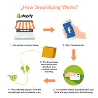 TURNKEY DROP-SHIPPING  WEB-STORE OF YOUR CHOICE