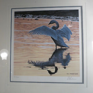 Ron R.S, Parker Numbered Signed Limited Edition Trumpeter Swan 8 Kitchener / Waterloo Kitchener Area image 2