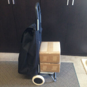 Rolling cart / dolly 2-in-1