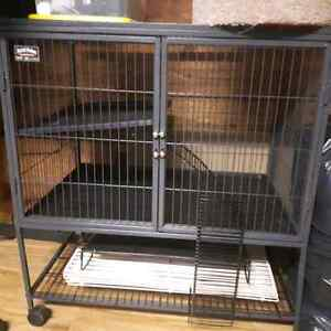 Ferret Nation cage, play pen and small animal accessories