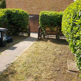 Best gardening service's 🍃/ pressure washing services