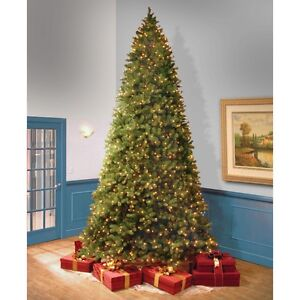 """12 foot """"Feel-Real"""" Bayberry Spruce Christmas Tree"""